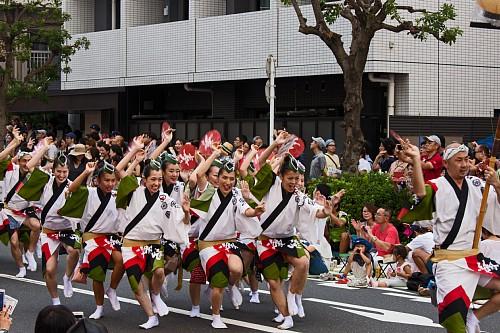 awaodori1702_x500.jpg