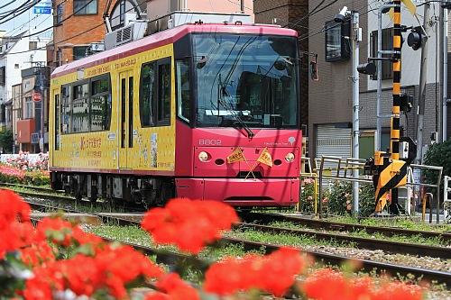 rose1943_x500.jpg